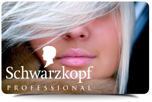 PERFECT MOUSS SCHWARZKOPF